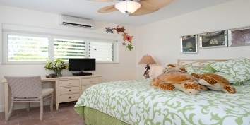 The Sea Turtle Room is located at beach level and features a king sized bed, private bathroom and TV.