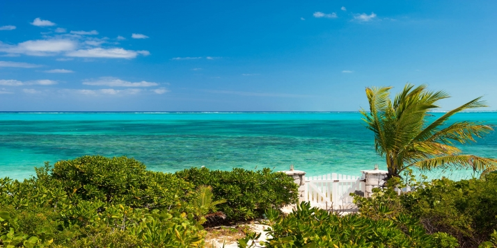 An absolutely charming, Caribbean-styled beach house with 4 bedrooms, very private swimming pool and stunning location!
