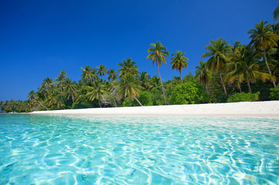 The Dominican Republic is famous for its white sand, palm lined beaches!