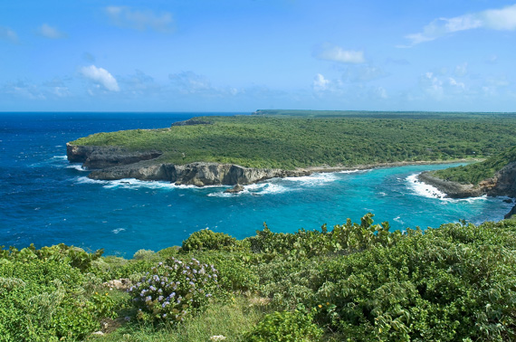 Scenic cliffs and coastal landscape of Guadeloupe, Caribbean.